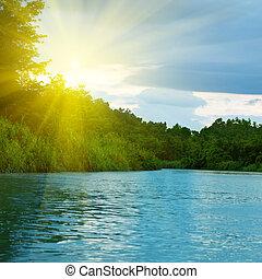 forêt, profond, lac