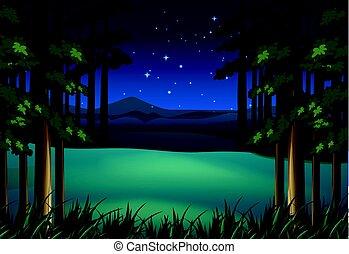 forêt, scène, étoiles, nuit