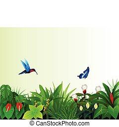 forêt tropicale, fond