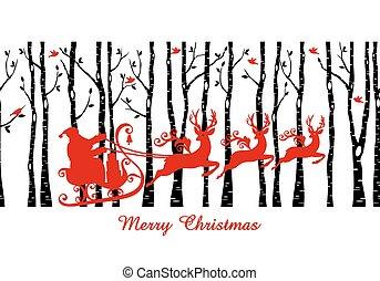 forêt, vecteur, arbre, santa, bouleau
