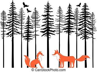 forêt, vecteur, renards