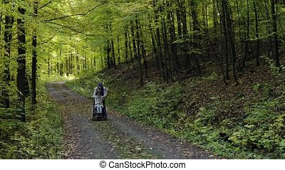 forest., automne, fauteuil roulant, couple, personne agee