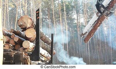 forest., fonctionnement, moissonneuse