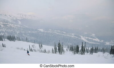 forest., montagnes, aerial:, hiver, snowboarder