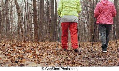 formation, femme, -, parc, marche, personnes agées, deux, automne, nordique, avoir, vue postérieure