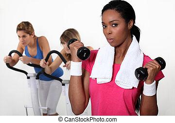 formation, gymnase, femmes