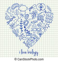 forme coeur, biologie, dessins