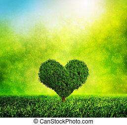 forme coeur, nature, amour, arbre, environnement, grass., vert, croissant