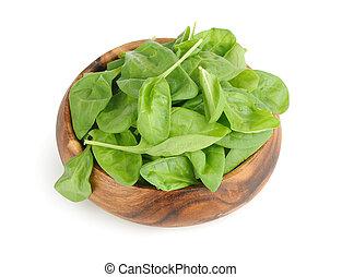 frais, feuilles, vert, épinards