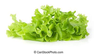 frais, salade verte, salade verte