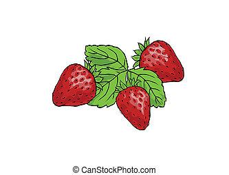 fraises, trois, juteux