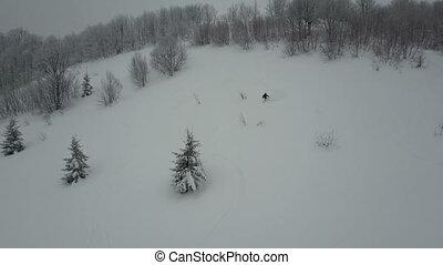 freeride., oeil, snowboarder, arbres., vue, -, neige, oiseaux, sports, descendre, poudre, au-dessus, coup, aérien, extrême, blanc, hiver
