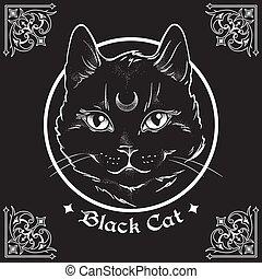 front, chat, sien, noir, lune