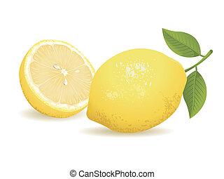 fruit, citron