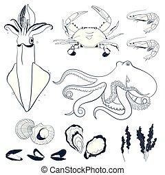 fruits mer, ensemble, elements., main, dessiné