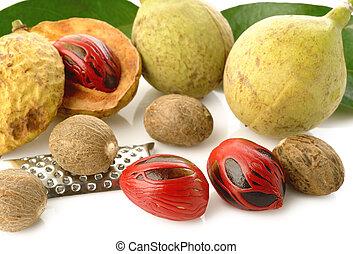 fruits, muscade