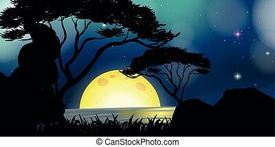 fullmoon, silhouette, scène, nuit