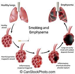 fumer, emphysème, eps8