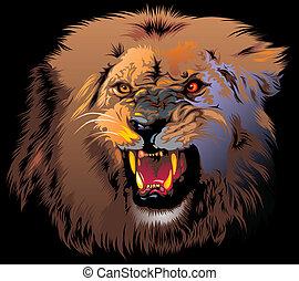 furieux, lion