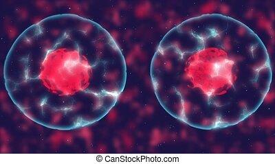 fusion, cellules