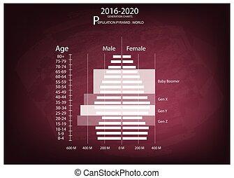 génération, 2016-2020, graphiques, 4, pyramides, population