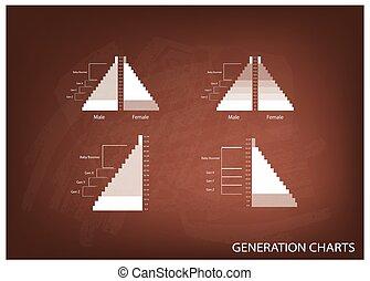 génération, graphiques, population, 4, pyramides