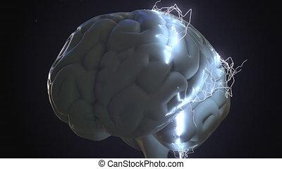 génération, ou, boulons, sur, idée, apparenté, éclair, animation, brain., humain, conceptuel, ennui, idée génie, 3d