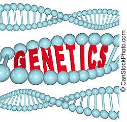 génétique, -, mot, adn