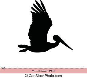 gabarit, -, conception, vecteur, silhouette, logo, pélican, illustration, oiseau