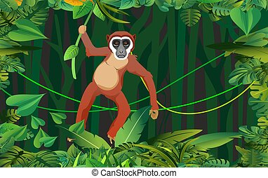 gabarit, junle, bleu, cadre, rivière, vert, singe, branche, arbre, pend, scène, jungle, vecteur, nuit, folliage