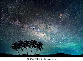 galaxy., noix coco, silhouette, manière, ciel, nuit, arbre, long, étoiles, laiteux, plam, mountain., photographie., paysage, exposition