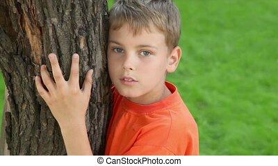 garçon, étreintes, stands, été, peu, arbre, closeup, jour, vue