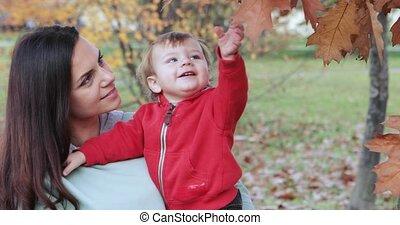 garçon, bébé, automne, parc ville