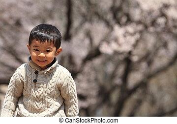 garçon, cerise, japonaise, années, fleurs, (3, old)