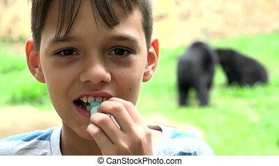 garçon, heureux, jeune, zoo