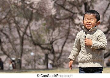 garçon, japonaise, fleurs, cerise