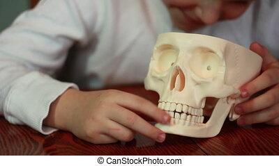 garçon, jeux, crâne