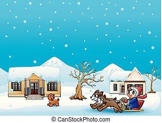 garçon, neiger, deux, traîneau, dessin animé, village, équitation, tiré, chiens