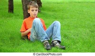 garçon, peu, assied, été, arbre, penche, contre, herbe, jour