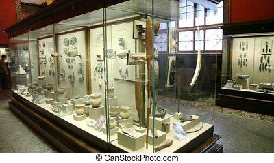garçon, peu, musée, histoire, panoramique, girl