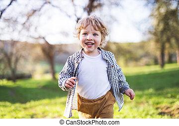 garçon, printemps, nature., dehors, courant, enfantqui commence à marcher, heureux