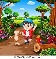 garçon, singe, rainforest