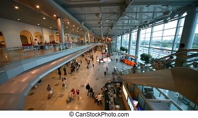 gens, aéroport, salle, russia., domodedovo, moscou