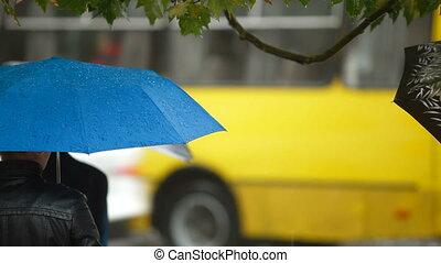 gens, parapluies, ville