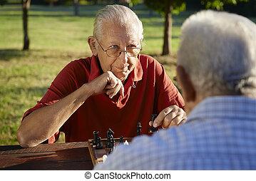 gens retraités, hommes, parc, deux, échecs, aîné actif, jouer