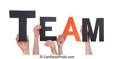 gens, tenue, équipe