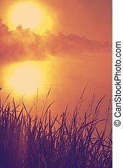 gentil, lac, coucher soleil, sur