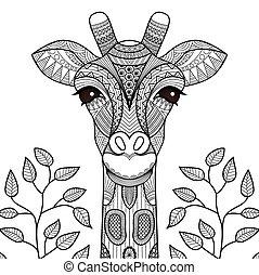 giraff, coloration, page