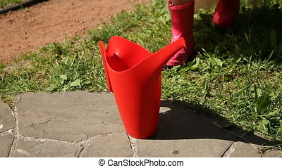 girl, arrosage, prend, rouges, boîte