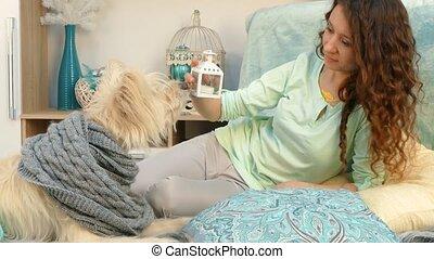 girl, chien, projection, noël, jouets
